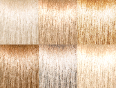 Blonde Hair Color Swatches Dark Brown Hairs Of Blonde Hair