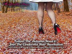 Autumn Road News Item Image