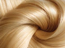 sub_image_hairfacts