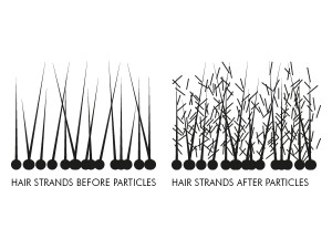 particles-hair-strands-diagram1